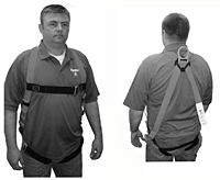 Basic Fit Harness